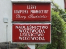 Woziwoda