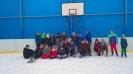 Rok szkolny 2016/2017 :: Ferie na lodowisku
